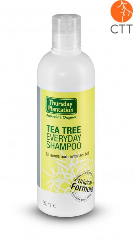Thursday Plantation Shampoo Original 250ml, 100% Pure Original Australian, EAN 9