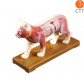 Katze Hartplastik