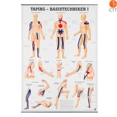Planche d´enseignement TAPING - la base (seulement en Allemand) 70 x 100cm